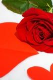 Cuore della carta e della rosa rossa Immagine Stock Libera da Diritti