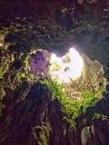 Cuore della caverna Immagini Stock Libere da Diritti