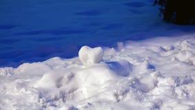 Cuore della neve Immagini Stock