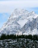 Cuore della neve della montagna Fotografia Stock Libera da Diritti