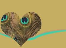 Cuore della piuma del pavone Fotografia Stock