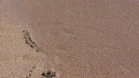 Cuore della sabbia lavato dalle onde stock footage