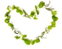 Cuore delle erbe Immagini Stock Libere da Diritti