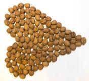 Cuore delle noci su un fondo bianco Fotografia Stock Libera da Diritti