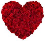 Cuore delle rose rosse Fotografia Stock
