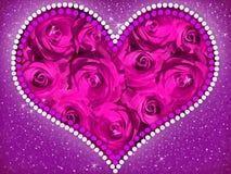 Cuore delle rose viola fotografia stock libera da diritti