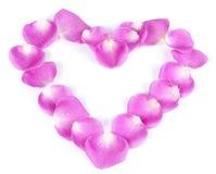 Cuore dentellare del petalo di rosa Fotografie Stock Libere da Diritti