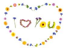 Cuore di amore, fondo dei fiori dei biglietti di S. Valentino Vista superiore, disposizione piana Fotografia Stock