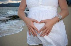 Cuore di gravidanza Fotografia Stock