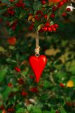 Cuore di legno rosso che appende su un albero con le bacche rosse Immagine Stock Libera da Diritti