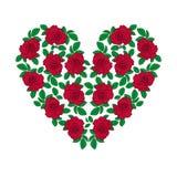 Cuore di rosa di colore rosso Immagine Stock