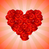 Cuore di rosa di giorno del biglietto di S. Valentino Fotografia Stock Libera da Diritti