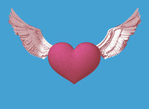 Cuore di simbolo dell'incisione con l'illustrazione delle ali Fotografia Stock