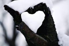 Cuore di Snowy Fotografie Stock Libere da Diritti