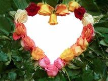 Cuore di varie rose colorate Fotografia Stock
