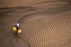 Cuore edule delle secche scoperte a bassa marea fotografie stock libere da diritti