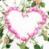 Cuore fatto delle rose e delle foglie rosa su fondo bianco Disposizione piana, vista superiore Priorità bassa del `s del bigliett Fotografia Stock
