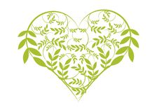 Cuore floreale verde Fotografia Stock