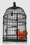 Cuore imprigionato Fotografia Stock