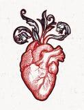 Cuore naturalistico nel telaio dei fiori e delle spine Lo stile gotico d'annata ha ispirato l'arte Illustrazione di vettore isola illustrazione di stock