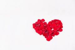 Cuore rosso Immagini Stock