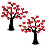 Cuore rosso che fiorisce sull'albero isolato Fotografie Stock Libere da Diritti