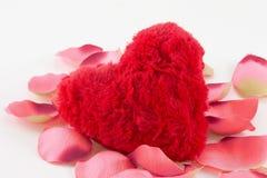 Cuore rosso con i petali di rosa Immagine Stock