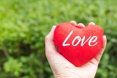 Cuore rosso con la parola di amore a disposizione sugli ambiti di provenienza dell'erba verde con lo spazio della copia Fotografie Stock