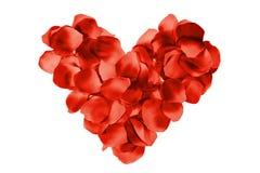 Cuore rosso del petalo immagini stock