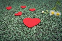 Cuore rosso e fiore sveglio sugli ambiti di provenienza verdi del percorso di camminata con lo spazio della copia Fotografia Stock Libera da Diritti