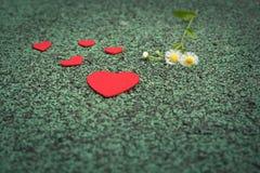 Cuore rosso e fiore sveglio sugli ambiti di provenienza verdi del percorso di camminata con lo spazio della copia Fotografia Stock