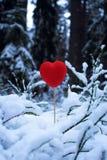 Cuore rosso nella neve Fotografie Stock