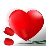 Cuore rosso perfetto   e tre tulipani rossi ai5 del raso Immagine Stock Libera da Diritti