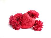 Cuore rosso strutturale con i fiori sopra priorità bassa bianca Fotografia Stock