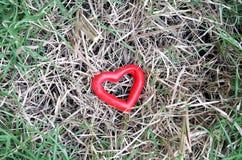Cuore rosso sull'erba Fotografie Stock Libere da Diritti