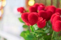 Cuore rosso in un vaso del giardino in una mattina romantica immagini stock
