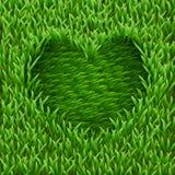 Cuore su erba verde. Immagine Stock