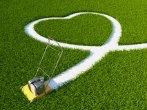 Cuore sull'erba Immagini Stock Libere da Diritti
