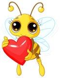 Cuore sveglio di amore della holding dell'ape Fotografia Stock