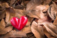 Cuore in un mucchio delle foglie jpg Fotografia Stock