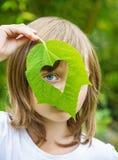 Cuore verde fotografie stock