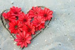 Cuori del fiore del biglietto di S. Valentino Fotografia Stock