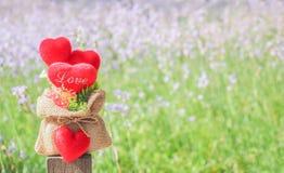 Cuori rossi con il giardino floreale della natura della sfuocatura Fotografia Stock Libera da Diritti