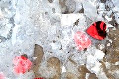 Cuori rossi sulla neve del ghiaccio Fondo di giorno del ` s del biglietto di S Immagine Stock