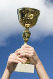 Cup. Against the sky directed Stock Images