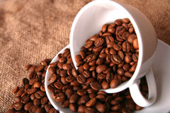 Cup And Beans Of Coffee Stock Photos
