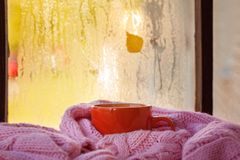 Cup of autumn tea, coffee, chocolate and yellow leaves on rainy window, copy space. Hot drink for autumn mood. Hygge concept. Cup of autumn tea, coffee stock photos
