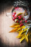 Cup of autumn tea with healthy healing berries and fall leaves Royalty Free Stock Photography