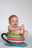 A Cup of Baby Stock Photography