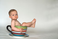 A Cup of Baby Royalty Free Stock Image